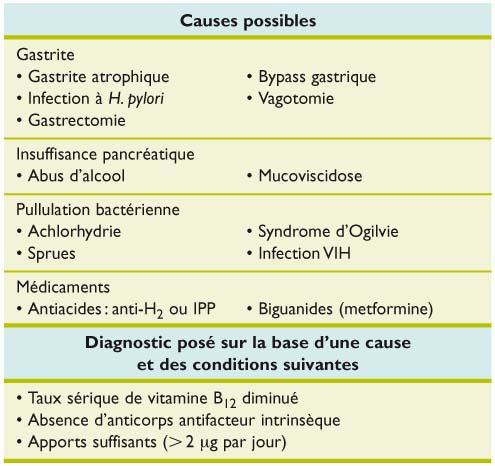 anemie vit b12