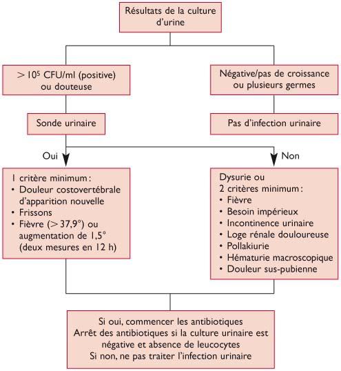 Bactériurie asymptomatique chez l'adulte : prise en charge