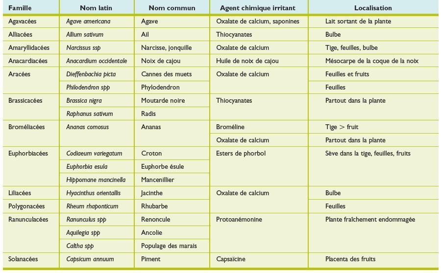 R actions cutan es allergiques et toxiques aux plantes revue m dicale suisse - Plante a bulbe liste ...
