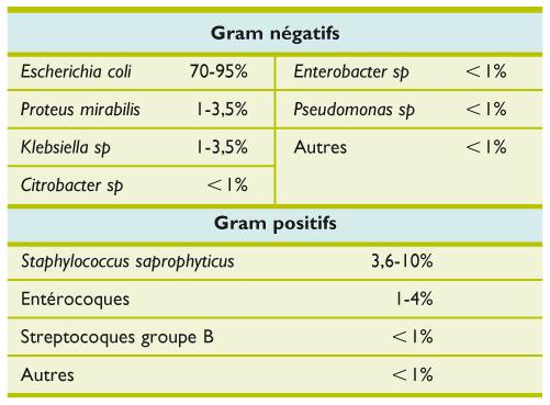 Traitement des infections urinaires simples : impact des