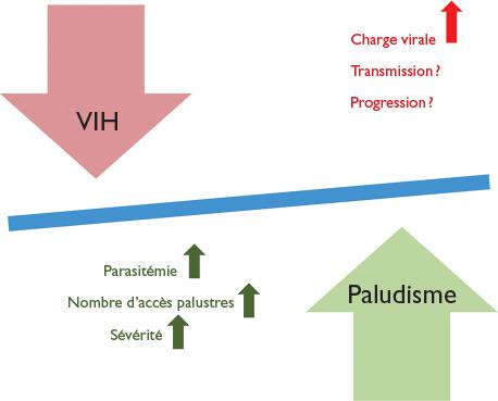 Paludisme et VIH : quelles interactions ? - Revue Médicale